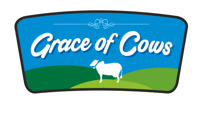 Grace of Cows